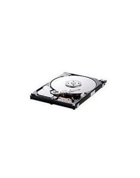DISCO DURO 320 GB IDE (Generico)